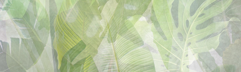 parete con decorazioni tropical e foglie verdi