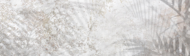 parete effetto invecchiato con ombre di palme e piante