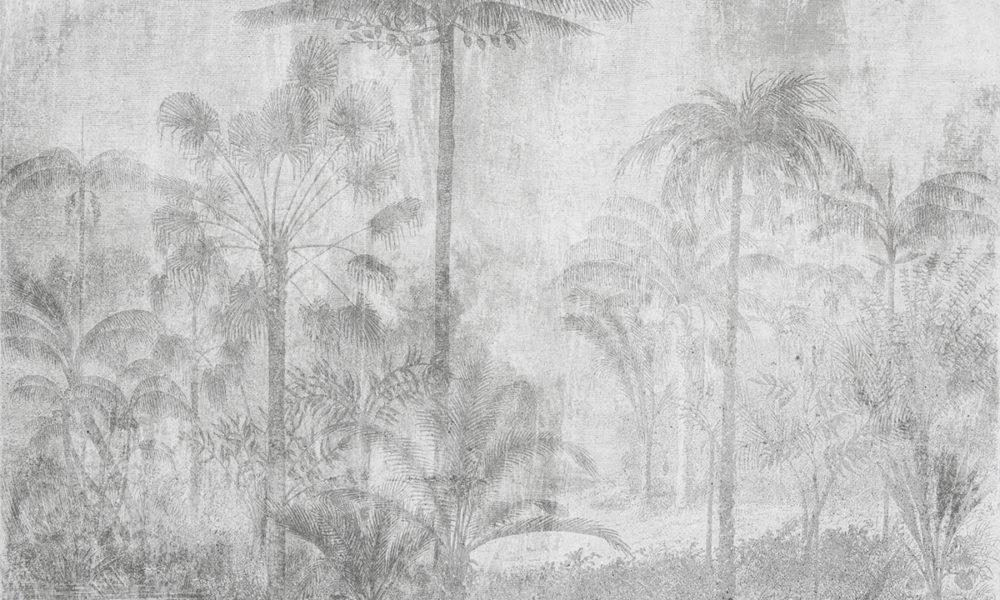 Parete stile tropical con piante e palme colore grigio in chiaroscuro