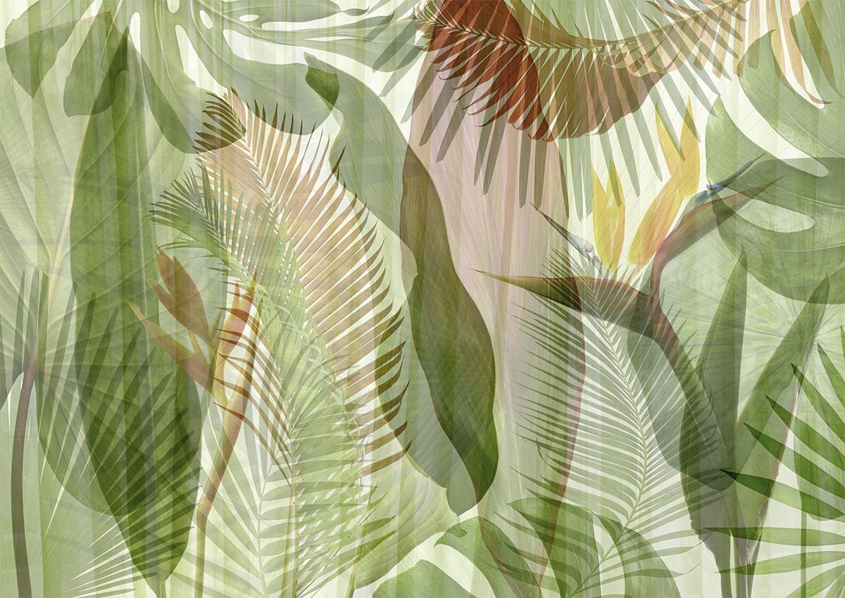 Muro effetto tropical con piante verdi, ficus, monstera